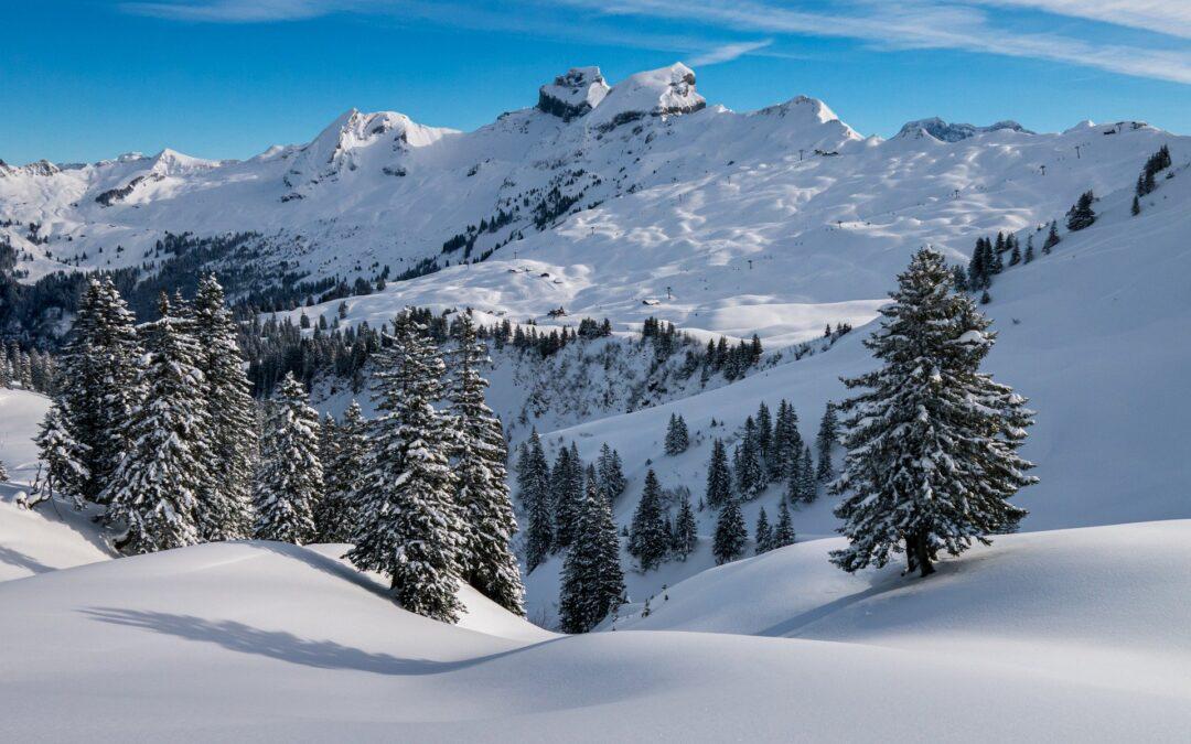 Anmeldung Skikurs jetzt Online